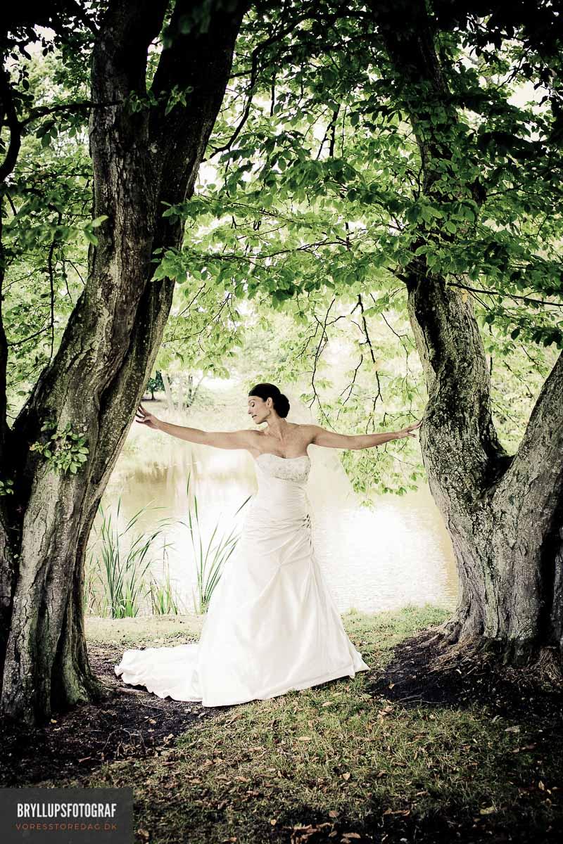 sted å holde bryllupet