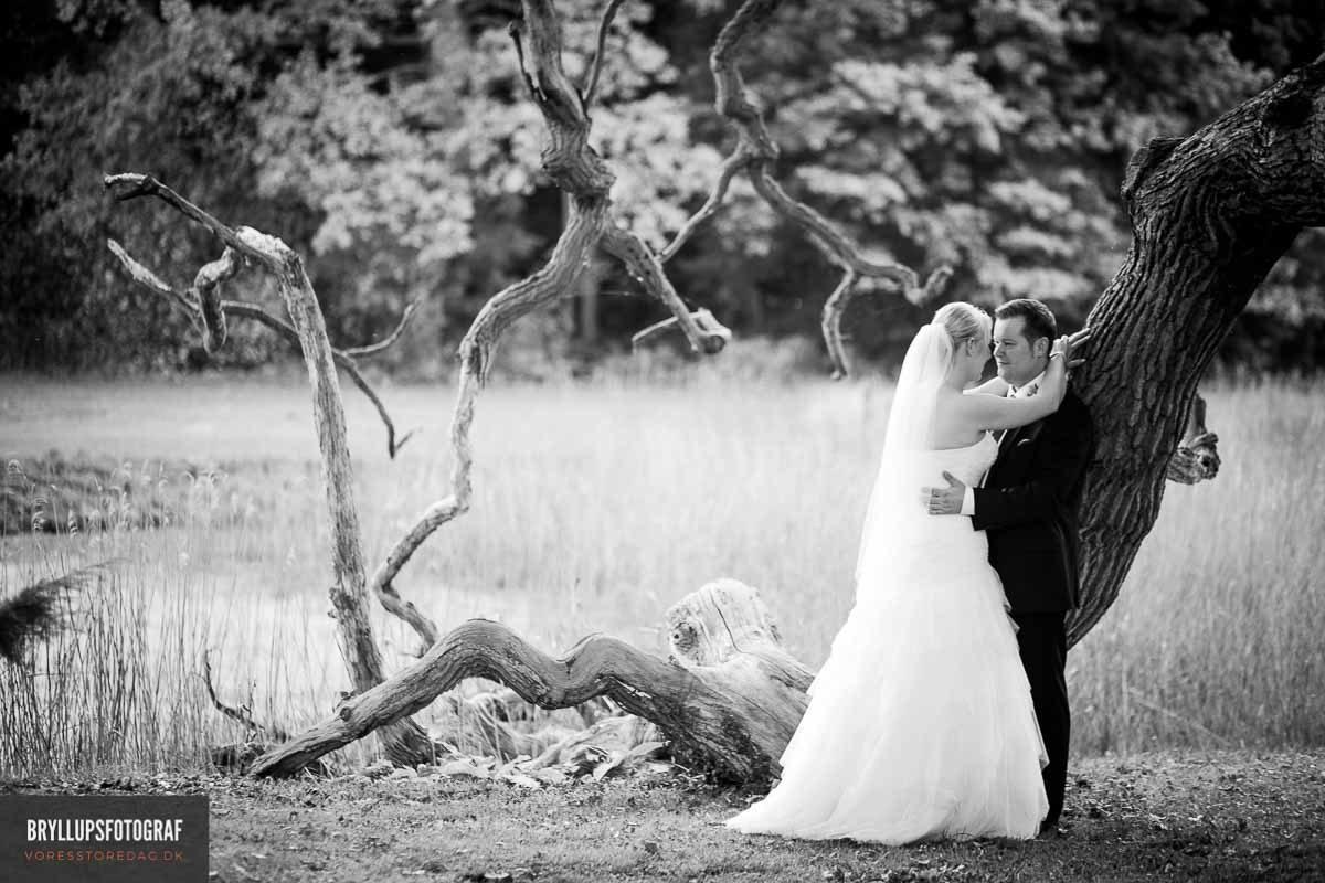Vejen mod ægteskabet